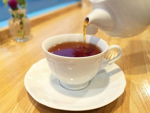 紅茶 ホット/アイス